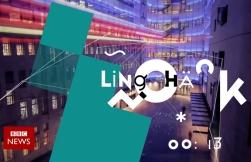 lingohack